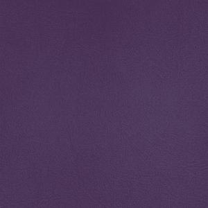 Pacifica - Purple Passion Finish